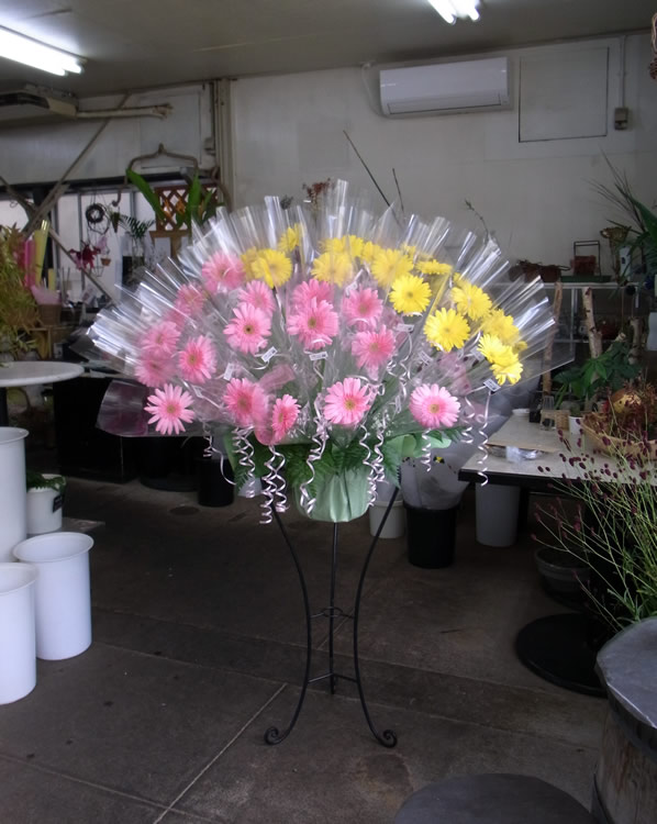 コンサートの花 店内撮影