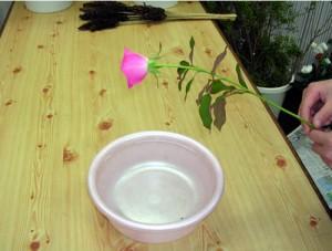 お花のお湯揚げ1