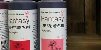切り花着色剤 切り花染色液 ファンタジー ピンク
